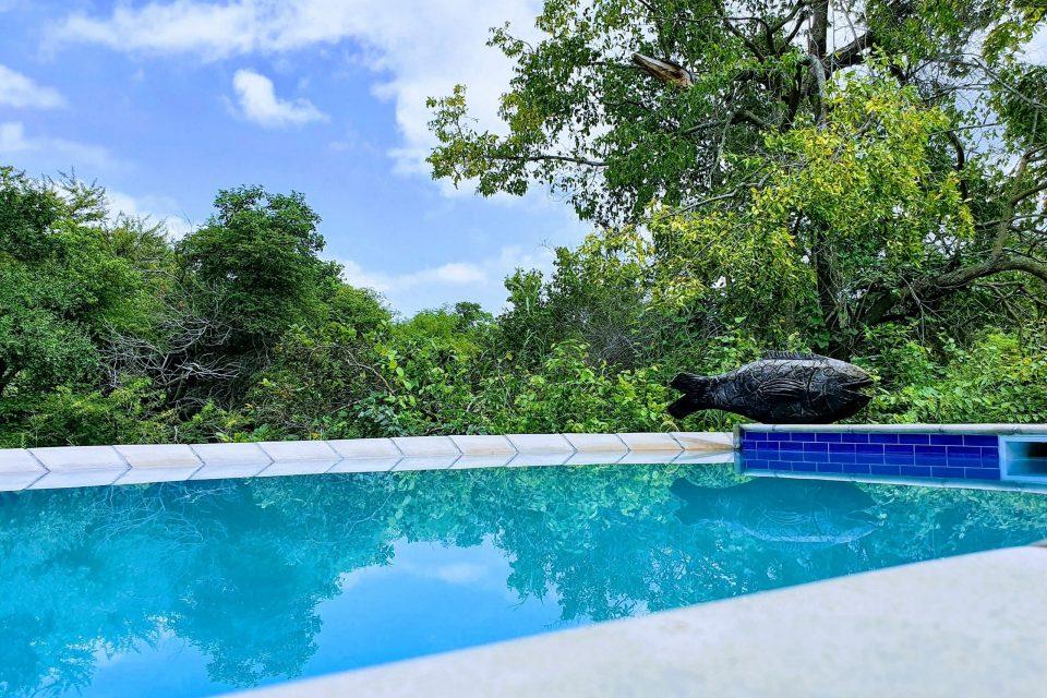 5- Swimming Pool
